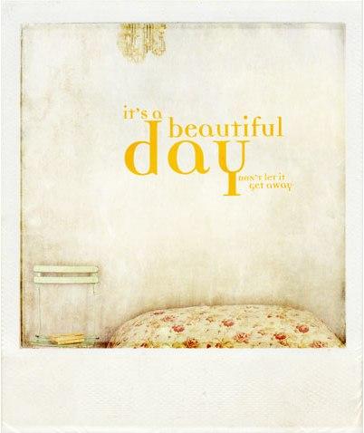 Beautiful-day-pola