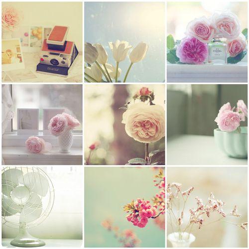 Kristybee photo collage