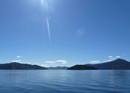 81 Marlborough Sounds